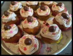 cupcakes (11)