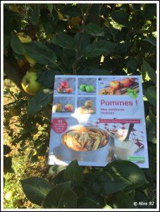 pommes-1